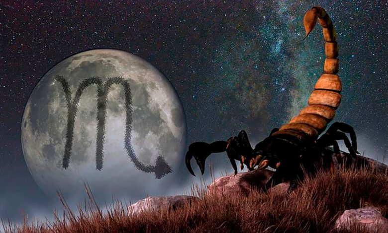 Scorpion signe zodiaque